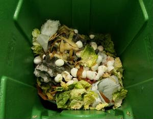 EU looks to cut back on food waste