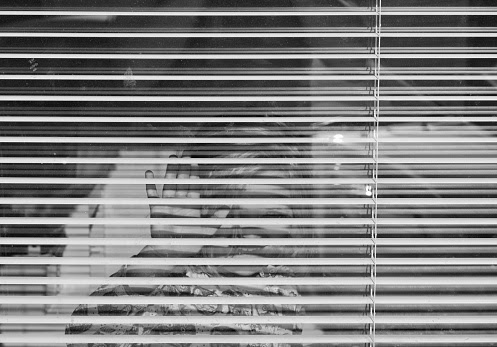Portrait Of Smiling Girl Gesturing Through Blinds
