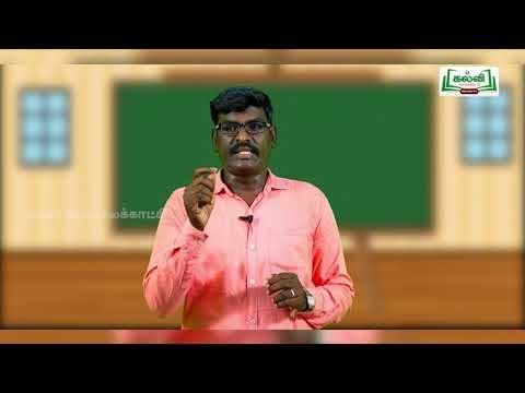 5th Science Bridge Course  வேலை, ஆற்றல் - தாவரங்கள் நாள் 5, 6 Kalvi TV