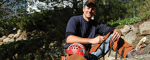 Top 10 Questions To Ask Before Hiring A Tree Care Professional | STIHL USA