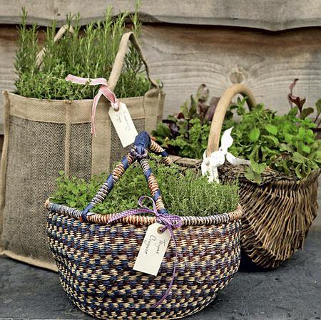 Sacolas e cestos de mercado reutilizados como vasos para plantas