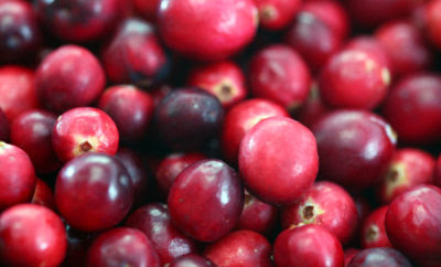 Study Suggests Cranberries Can Reduce Antibiotic Usage