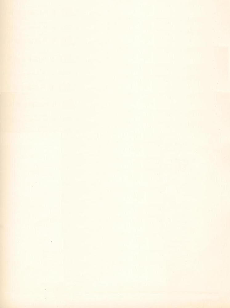 Mumford & Sons – White Blank Page Lyrics | Genius Lyrics