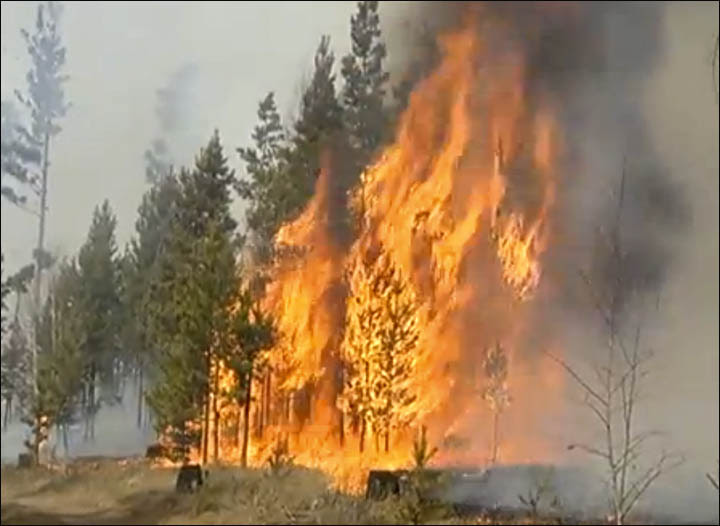 Wildfires in Trans-Baikal region