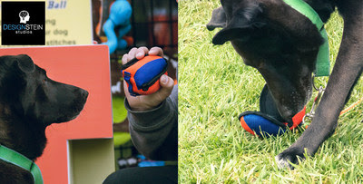 K9 Training Ball - Small Business Launches a Product That Actually Works