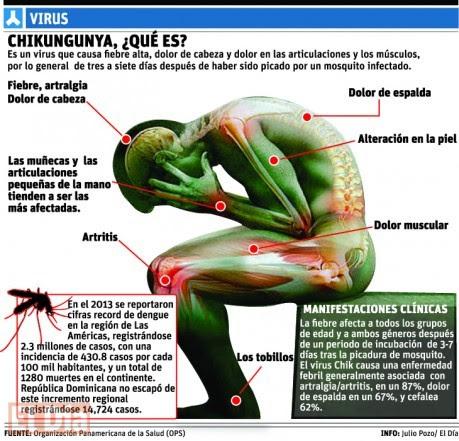 chikungunya 5