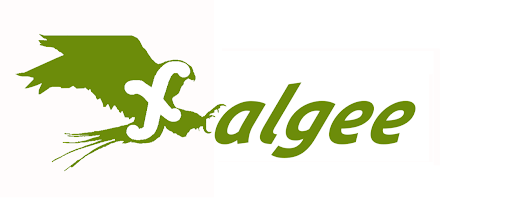 Careers at Falgee Software Development pvt ltd.