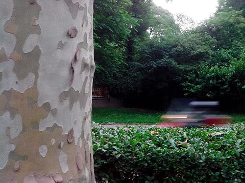 Triangolo della natura e una moto by Ylbert Durishti