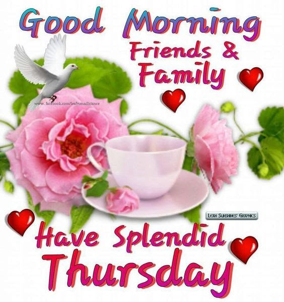 Good Morning Family And Friends Have A Splendid Thursday Pictures