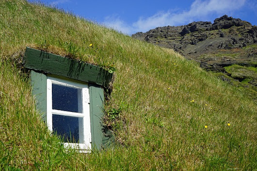 Green Roofs and the Benefits from Having One – Modern Housewives