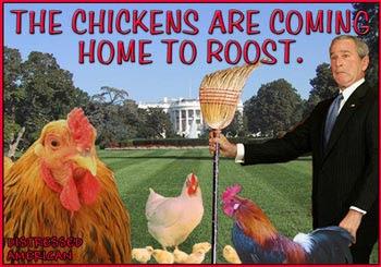 Chickens-Small-sm