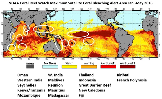 Global Coral Bleaching 2014-2017: Status and an Appeal for Observations