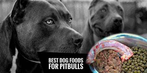 dog foods  pitbulls natural high protein  fat