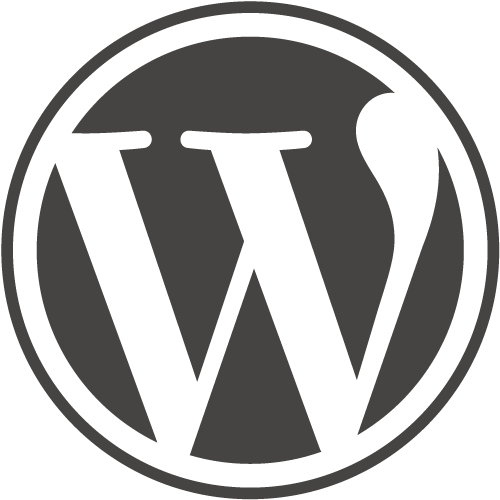 10th anniversary celebration of the first WordPress release