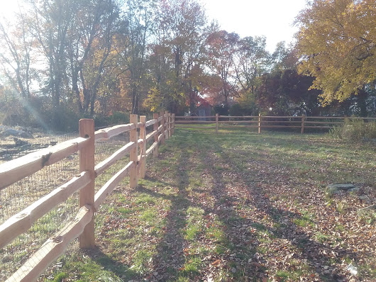 Keeping Your Fence Clean and Maintained - Fence It In