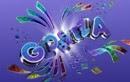 http://g1.globo.com/carnaval/2014/