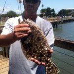 061111-flounder