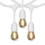 Feit 48' LED Filament String Light Set, White