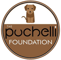 The Puchelli Foundation