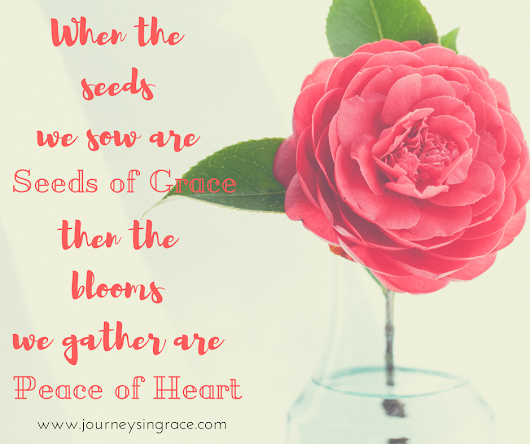 When Grace Seeds bring Heart Peace...#GraceMoments Link Up - Journeys in Grace