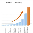 Taking Your IT Department to the Next Level – The IT Maturity Curve