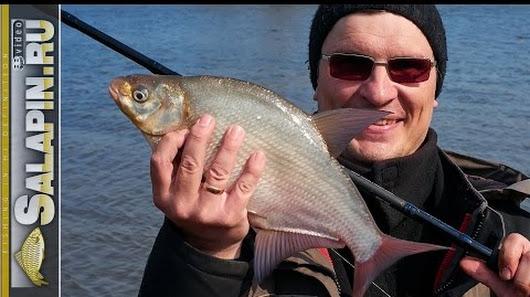 рыболовный сезон россия