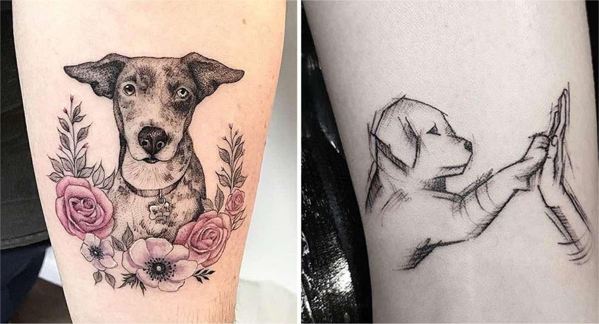 Si También Amas A Los Perros Entonces Querrás Llenar Tu Piel De