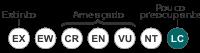 Status iucn3.1 LC pt.svg