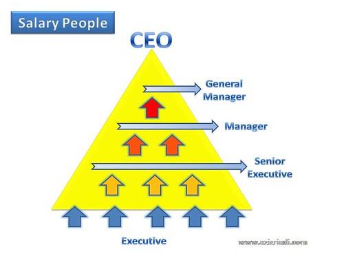 Salary People Triangle