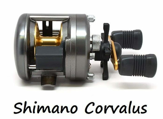 Best Baitcasting Reel Under $100 For Musky: Shimano Corvalus