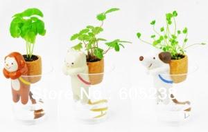 Self-Watering Plant Holders