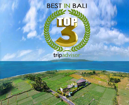 Floating Leaf Among Best Hotels in Bali According to Trip Advisor
