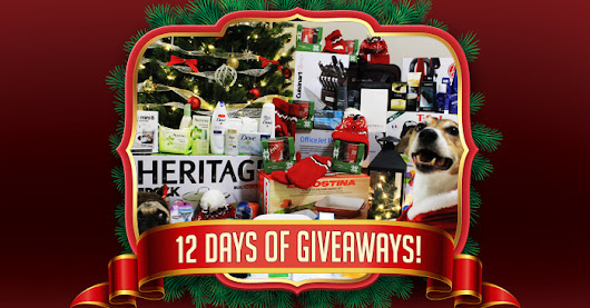 SaveaLoonie's 6th Annual 12 Days of Giveaways!