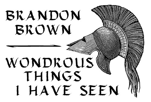 Brandon's Brown's Wondrous Things I Have Seen BIG GAME BOOKS MEDIUMS