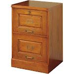Coaster 2-Drawer File Cabinet