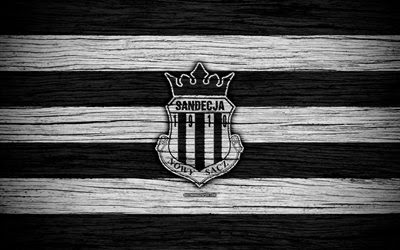 Download wallpapers Sandecja Nowy Sacz, 4k, Ekstraklasa, wooden texture, football, Poland, Sandecja FC, soccer, football club, FC Sandecja Nowy Sacz besthqwallpapers.com