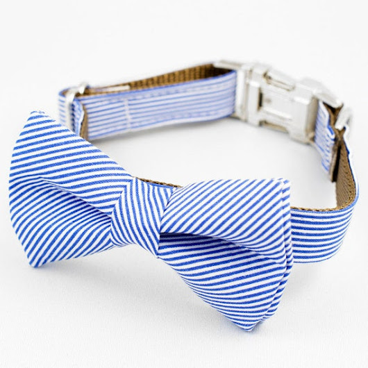 Bow Tie Dog Collar  Blue and White Stripe by TheRoverBoutique