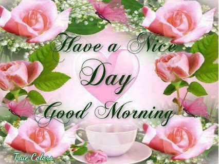Have A Nice Day Good Morning Pictures Photos And Images For