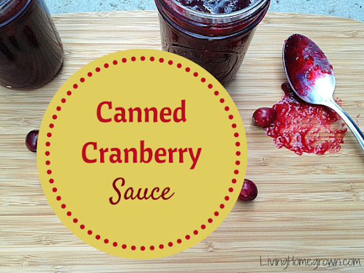Canned Cranberry Sauce with Balsamic - Living Homegrown