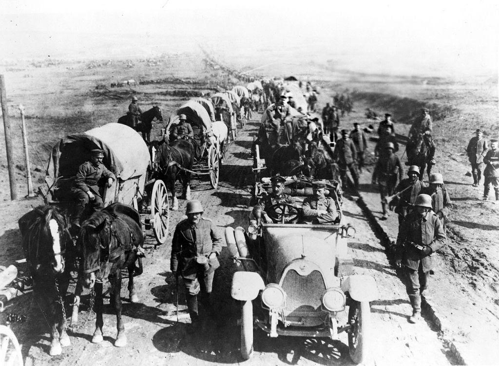 Os animais também lutaram na Primeira Guerra Mundial 14