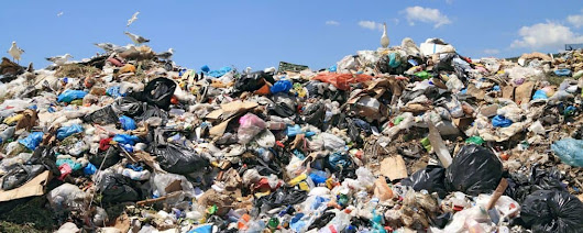 9 Ways Overflowing Waste Affects the Environment and Your Health | Eagle Dumpster Rental