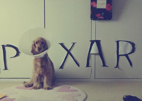 Best impersonation of the pixar lamp - Meme Guy