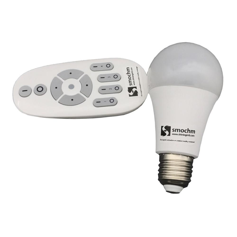 Smart Lights Echo