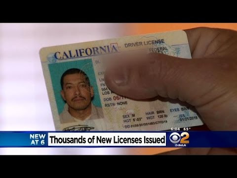 Give unauthorized immigrants a driver's license | Editorial