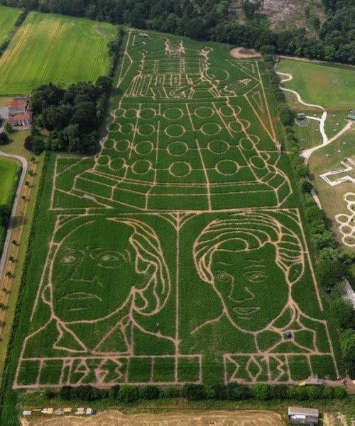 Doctor Who Corn Maze