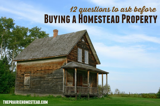 12 Questions to Ask Before Buying Homestead Property • The Prairie Homestead