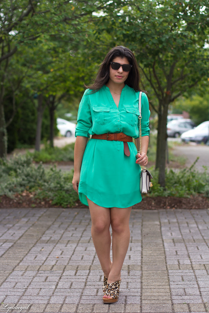 shirt dress and leopard wedges-2.jpg