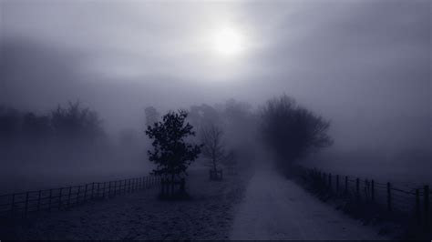 Fog Wallpapers 36630 1920x1080 px ~ HDWallSource.com
