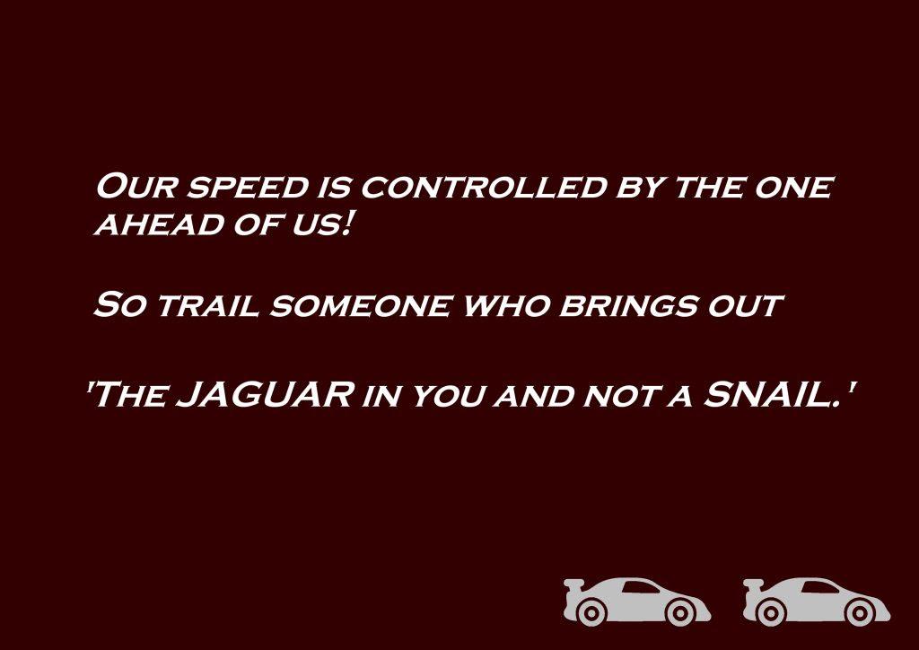 Jaguar Or Snail