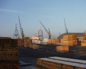 Import delays could cause business profit loss